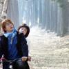 Du lịch Đảo Nami – phim Bản tình ca Mùa Đông ở Hàn Quốc