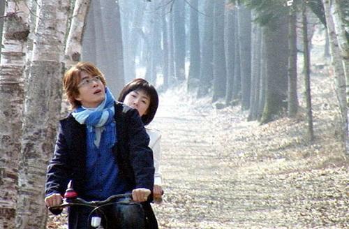 Du lịch đảo Nami Hàn Quốc