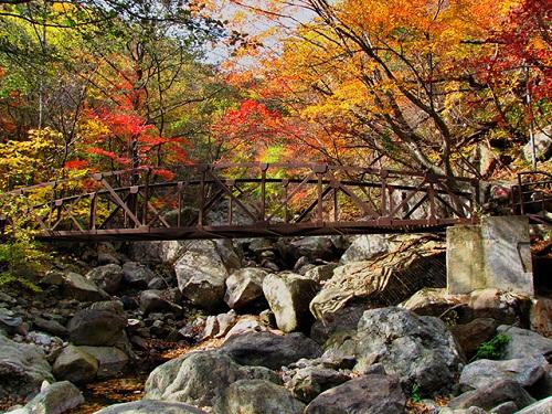 Núi Jirisan mùa lá đỏ